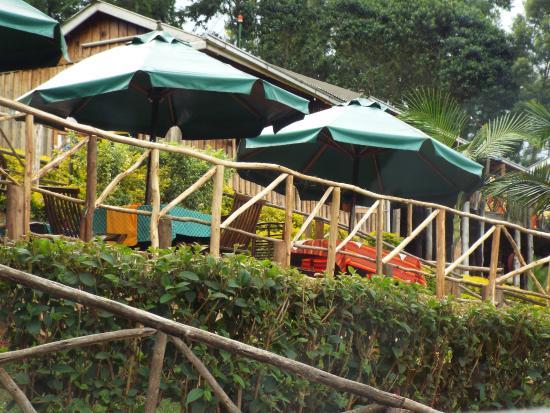 Aberdare Cottages Dream: Beautifu gardens