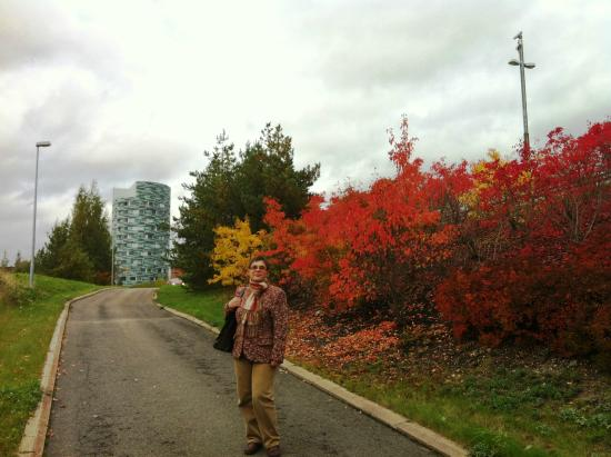 Centro Hotel Turku : Турку, золотая осень
