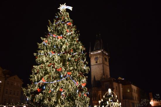 Prager Altstadt: Old Square Christmas tree