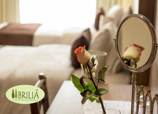Hotel Briliá: Habitación doble 2 camas