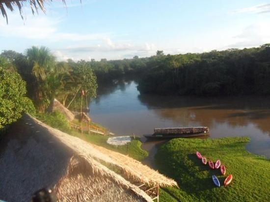 Amazon Rainforest Lodge: Vista el rio momon
