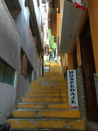 Rupa Wasi Lodge: Stairs to the hotel
