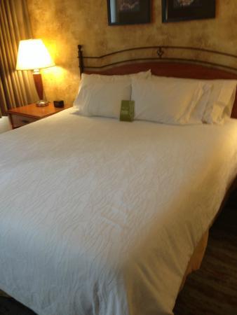 Hilton Garden Inn Phoenix Airport : comfy king bed