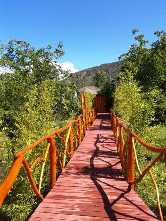 Cascada de las Animas: Camino a los lodges