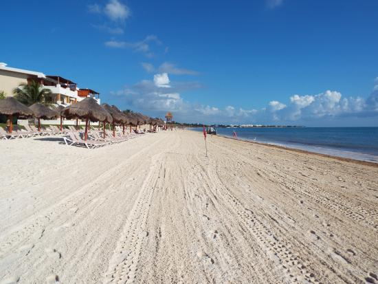 Beach after seaweed clean up - Picture of Now Sapphire Riviera