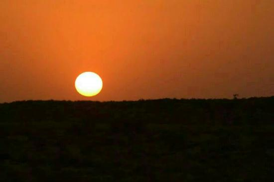 Thar Royale Desert Safari Jaisalmer