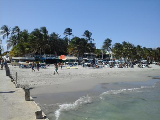 Hotel Windsurf Paradise: playa y hotel