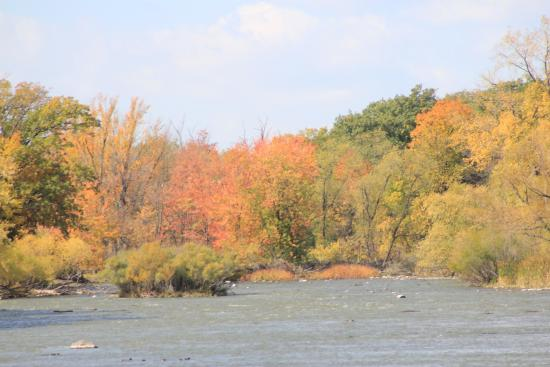 1000 Islands Environmental Center: beautiful fall colors