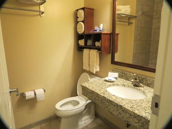BEST WESTERN PLUS Country Cupboard Inn: bath-sink area