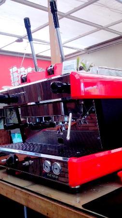 mazzio Polariz Coffee