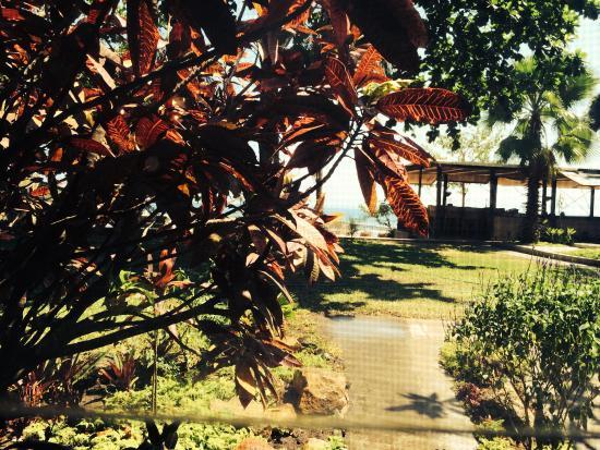Norman Carr Cottage : Lake Malawi beach view