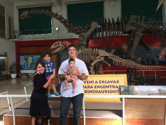 Museo Argentino de Ciencias Naturales Bernardino Rivadavia: Una tarde feliz con los dinosaurios