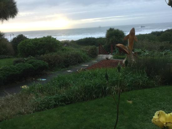 Casa Rubio Oceanfront Lodging: Garden view from 'The Studio'