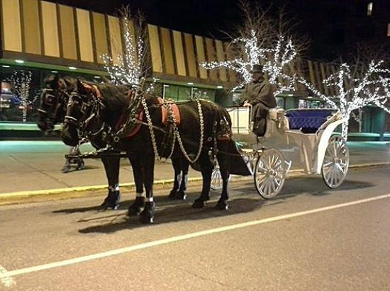 Chugiak, อลาสกา: Percheron Draft horse team waiting in front of the Hotel Captian