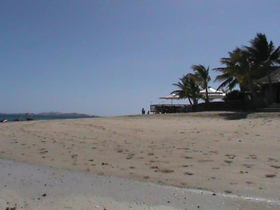 Castaway Island Fiji: view of hotel from the beach
