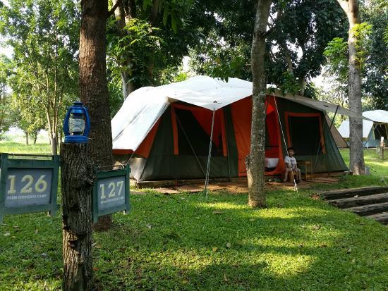 Farm Chokchai C&ground & Air -conditioner tent with nice steak - Review of Farm Chokchai ...