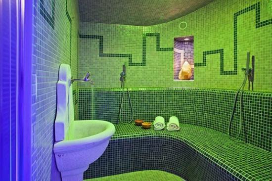 Alp Penzion: Wellness Essense, new steam sauna