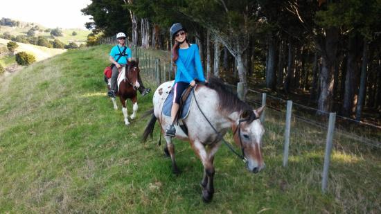 Mangapai Horse Treks
