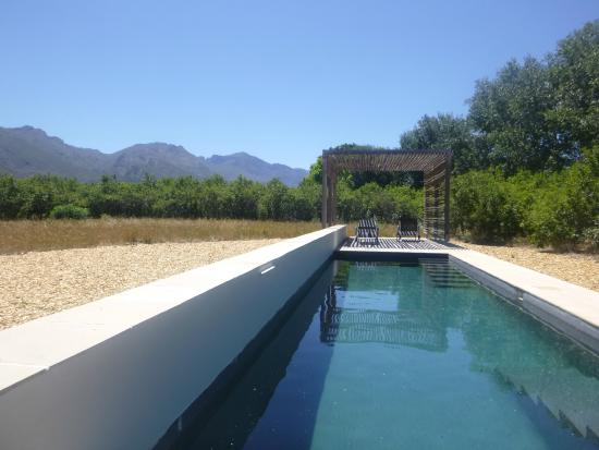 La Chataigne Wines and Guest Cottages: pool right beside cottage