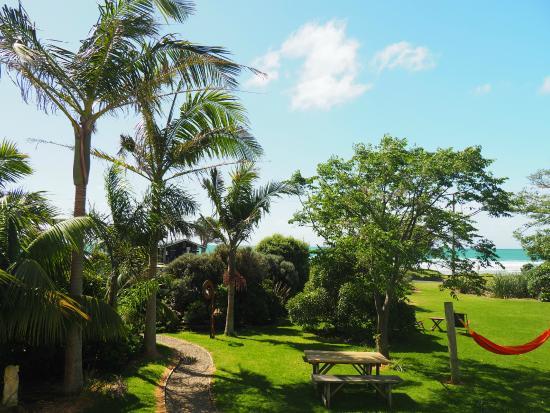 Endless Summer Lodge : Blick von der vorderen Veranda in den Garten