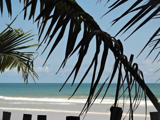 Mr Brights Surf School: Busua Beach