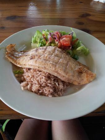 Lime Beach Bar: Fish lunch