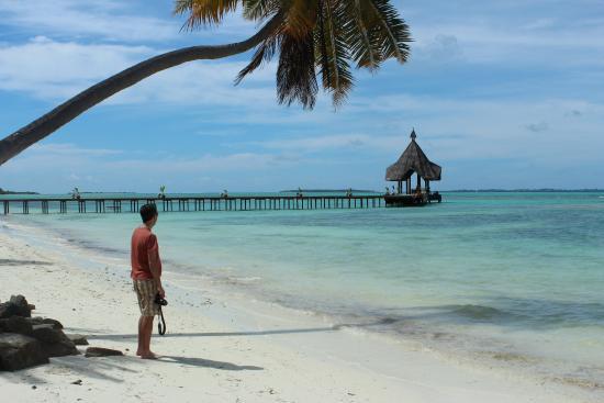 Canareef Resort Maldives: Bådebroen som benyttes ved ankomst