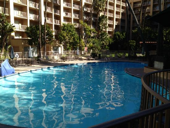 piscina picture of crowne plaza hotel san diego. Black Bedroom Furniture Sets. Home Design Ideas