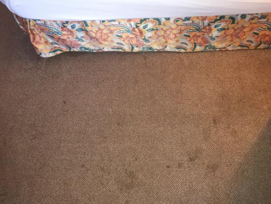 Derag Livinghotel Großer Kurfürst: So schmutzig war der komplette Zimmerboden