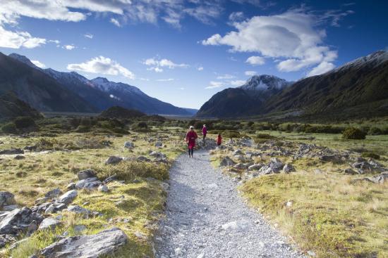 Kea Point Track: Nice trail