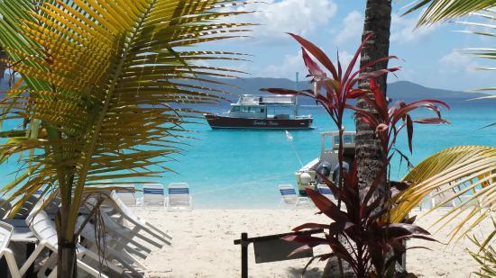 Sadie Sea Charters: Sadie Sea off the Soggy Dollar Bar, Jost Van Dyke