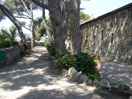Musee de la Castre: Jardin devant le musée