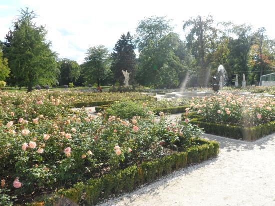 Il giardino di rose di castello quistini foto