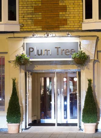 Plum Tree Café Bar