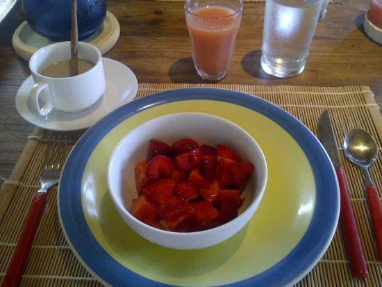 Posada Kanosta: Parte del desayuno del sabado Fresas y Lechoza picadita con juguito de guayaba