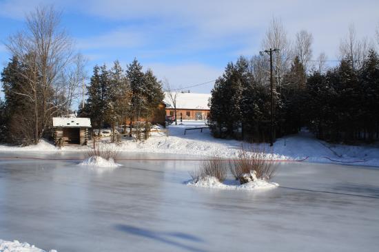 Saint-Bernard-de-Lacolle, Canada: Patinoire pour patinage libre