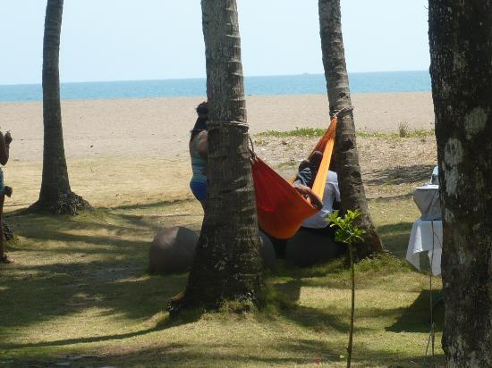 Canciones del Mar Boutique Hotel: hammock in front of hotel