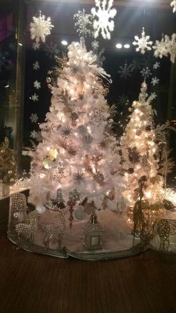 Tari's Premier Cafe and Inn : Our Christmas Tree