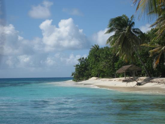 Petit St. Vincent Resort: Beach shot