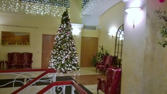 Baltic Hotel Vana Wiru: hall