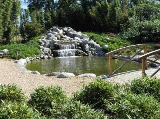 Jardin photo de les jardins aquatiques saint didier sur for Jardin aquatique