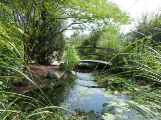 Jardins Aquatiques St Didier