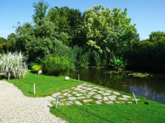 jardin photo de les jardins aquatiques saint didier sur chalaronne tripadvisor. Black Bedroom Furniture Sets. Home Design Ideas