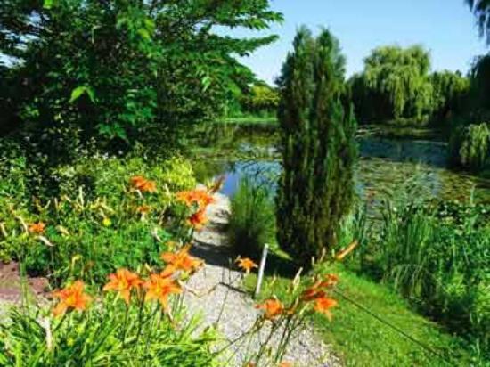 Les Jardin Aquatique St Didier Sur Chalaronne Girimunho