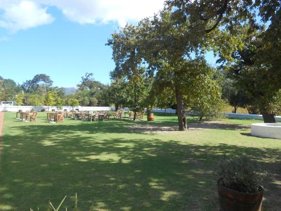 Solms-Delta Farm Tours: Wine tasting area