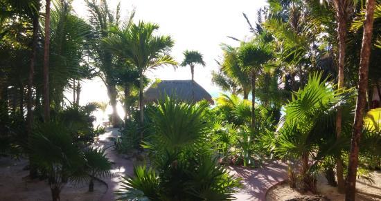Nah Uxibal Villa and Casitas: Gardens