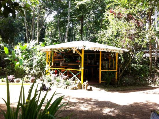 cabinas punta uva: exterior