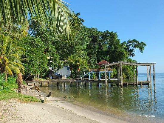 Hotel Villa Caribe: En bas de l'hôtel
