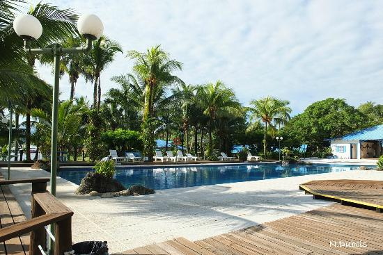 Hotel Villa Caribe: La superbe piscine