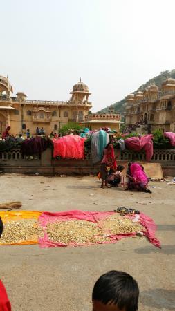 Galtaji Temple : Monkey Temple
